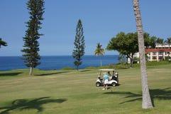 Niezidentyfikowani golfiści cieszą się golf grę Zdjęcia Royalty Free