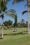 Niezidentyfikowani golfiści cieszą się grę golf Zdjęcie Royalty Free