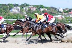 Niezidentyfikowani grupowi konie i dżokeje fotografia stock