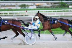Niezidentyfikowani grupowi konie i dżokeje zdjęcie royalty free