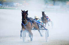 Niezidentyfikowani grupowi konie i dżokeje obraz royalty free