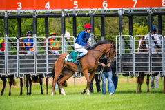 Niezidentyfikowani jeźdzowie, rasa na racecourse Fotografia Royalty Free