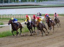 Niezidentyfikowani konie i dżokeje galopujący w rasie przy Belgrade hipodromem na Jun 19, 2016 w Belgrade, Serbia zdjęcia royalty free