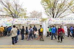 Niezidentyfikowani ludzie chodzi w Yeouido wiośnie Kwitną festiwal Obrazy Royalty Free