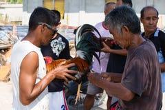 Niezidentyfikowani mężczyzna podczas Filipińskiej tradycyjnej cockfighting rywalizaci zdjęcia stock