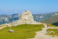 Niezidentyfikowany rowerzysta wspina się wzgórze w Bucegi górach w Rumunia Obraz Stock