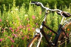 Niezmienny przekładnia bicykl w odbiciu parkującym przy drogą rocznika rower Zdjęcie Royalty Free