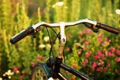 Niezmienny przekładnia bicykl w odbiciu parkującym przy drogą rocznika rower Fotografia Royalty Free