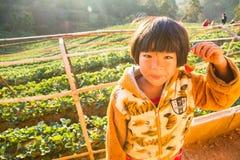 Nieznane dziewczyny mienia imię truskawka w rękach w truskawki gospodarstwie rolnym przy rankiem szczęśliwym Zdjęcie Royalty Free