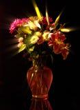 Niezwykła elokwencja, oświadczenie w Ray kwiatach zdjęcia royalty free