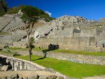 Niezwykły widok Machu Picchu tarasy Obraz Stock