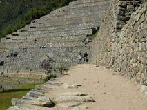 Niezwykły widok Machu Picchu tarasy Obraz Royalty Free