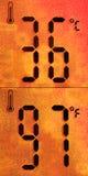 niezwykle gorący Fotografia Stock