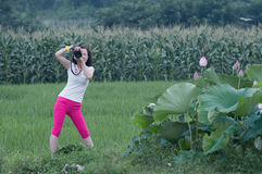 Photographer in working. Beauatiful Lotus flowers with each colours blooming everywhere and a nifty female photographer working in rice fields royalty free stock photo