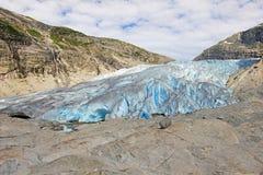 Nigardsbreen冰川,大Jostedalsbreen冰川,挪威,欧洲的一条美丽的胳膊 图库摄影