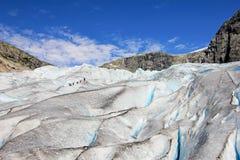 Nigardsbreen冰川,大Jostedalsbreen冰川,挪威,欧洲的一条美丽的胳膊 库存图片