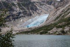 Nigardsbreen är en glaciär i Norge Fotografering för Bildbyråer