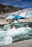 Nigardsbreen glacier in summer, Norway Royalty Free Stock Photo