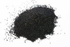 Nigella black seed Stock Photography