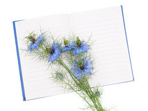 Nigella damascena aka Love-in-a-mist flowers on notebook. Memory Stock Photos