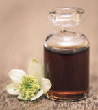 Nigella flower and essential oil. In a glass bottle stock images