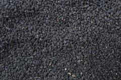 Nigella fröbakgrund Naturlig krydda textur royaltyfri fotografi