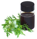 Nigella leaves with essential oil. In a bootle over white background Royalty Free Stock Image