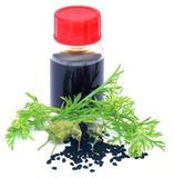 Nigella leaves with seeds and essential oil. In a bottle over white background Stock Photo