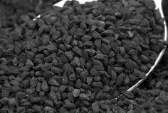 Nigella ou cominhos preto imagens de stock