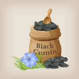 Nigella sativa Black cumin in small sack. Royalty Free Stock Photos