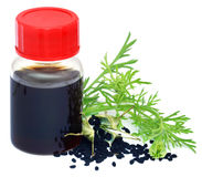 Nigella seeds and essential oil in a glass bottle Royalty Free Stock Photography