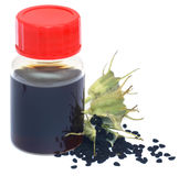 Nigella seeds and essential oil in a glass bottle Royalty Free Stock Image
