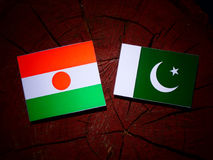 Niger flag with Pakistan flag on a tree stump isolated. Niger flag with Pakistan flag on a tree stump stock illustration