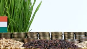 Niger flag waving with stack of money coins and piles of wheat. And rice seeds stock footage