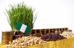 Nigeria flag waving with stack of money coins and piles of wheat royalty free stock photo