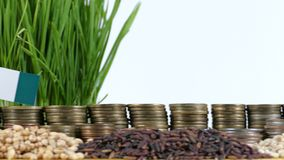 Nigeria flag waving with stack of money coins and piles of wheat. And rice seeds stock footage