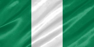 Nigeria flaga ilustracja wektor