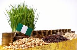 Nigeria flagga som vinkar med bunten av pengarmynt och högar av vete royaltyfri foto