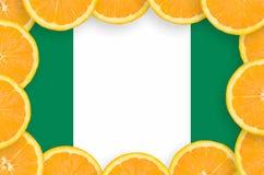 Nigeria-Flagge im neuen Zitrusfrucht-Scheibenrahmen stockfotos