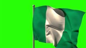 Nigeria national flag waving on flagpole stock video footage