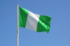 Nigeria-volle Markierungsfahne stockfotografie