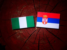 Nigerian flag with Serbian flag on a tree stump isolated. Nigerian flag with Serbian flag on a tree stump royalty free stock photo