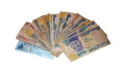 Nigerianska pengar royaltyfri fotografi