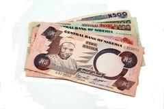 Nigerischer Naira, getrennt. Stockfotografie