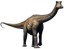 Nigersaurus ilustração do vetor