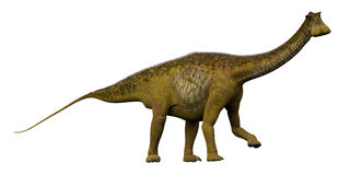 Nigersaurus Side Profile Royalty Free Stock Image