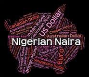 Nigeryjski Naira Wskazuje obcą walutę I banknoty royalty ilustracja