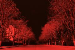 Night. Of the Red Road Stock Image