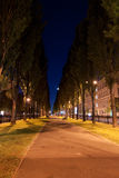 Night in alley. In Kiev city, Ukraine Royalty Free Stock Images