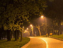 Night alley. Magic night alley: Green trees, road, shiny lantern lights, empty benches stock photo
